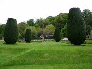 englischer Rasen mit Rasenmäher mit Spindelmähwerk