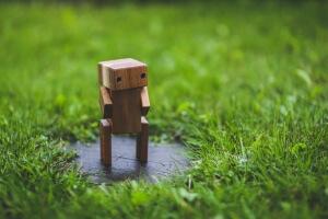 Maeroboter - der große Test und Vergleich